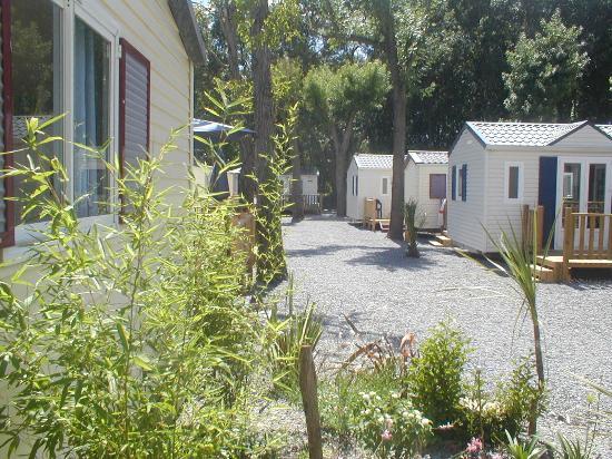 Riviera Soleil : Lodges