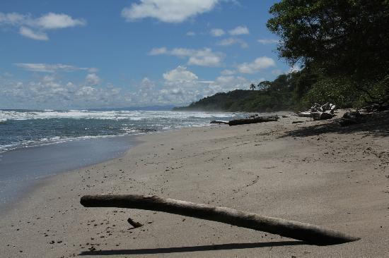 Blue Surf Sanctuary: Playa Hermosa