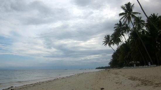 Reggae Guesthouse: Alona beach - 5 minute walk away