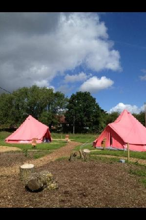 St. Swithins Cottage : the first two glamping tents!