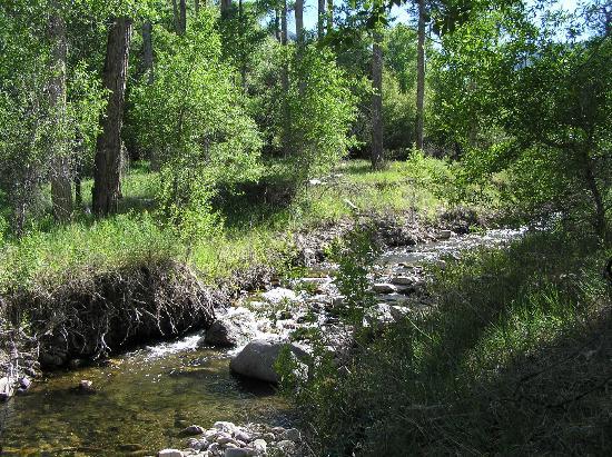 Bullion Creekside Retreat: Creek running through retreat