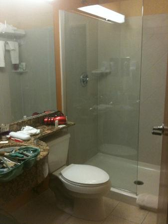 Microtel Inn & Suites by Wyndham Verona: Tight bathroom - Very Clean!
