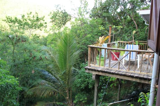 Treetops: Hotel e dintorni