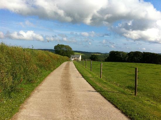 The lane down to Bokiddick Farm