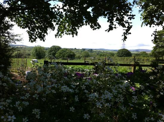 Bokiddick Farm: View from farmhouse garden