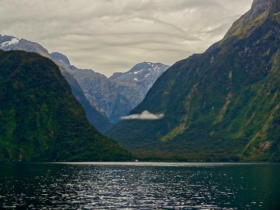 Milford Sound Fly - Cruise - Fly: Milford Sound
