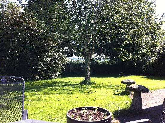 Bokiddick Farm: The garden from the patio