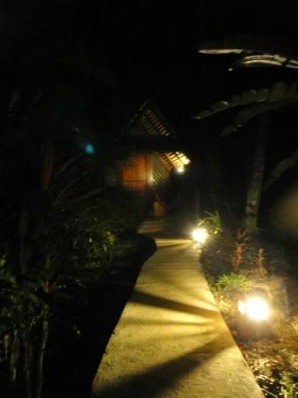 Hotel Shawandha Lodge: walkway at night