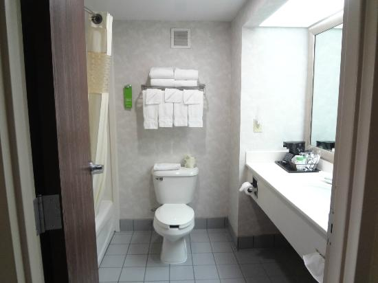 Hampton Inn Dickson, TN - bathroom