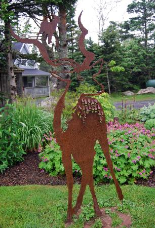 Oceanstone Resort: see through stag