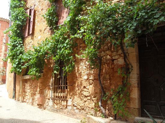Villa Des Roses: Vigne au centre de Roussillon