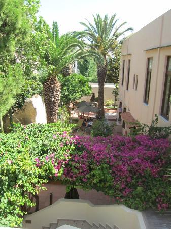 Pepi Studios: View of the garden/pool