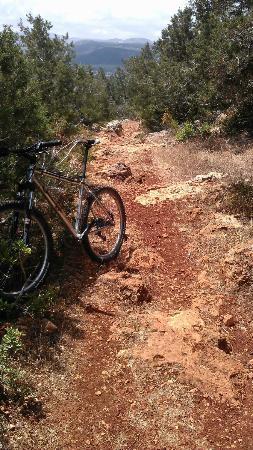 Wheelie Cyprus - Day Tours: nice single trail