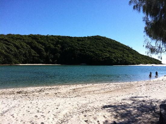 Gemini Court Holiday Apartments: Relax at Tallebudgera Creek nearby