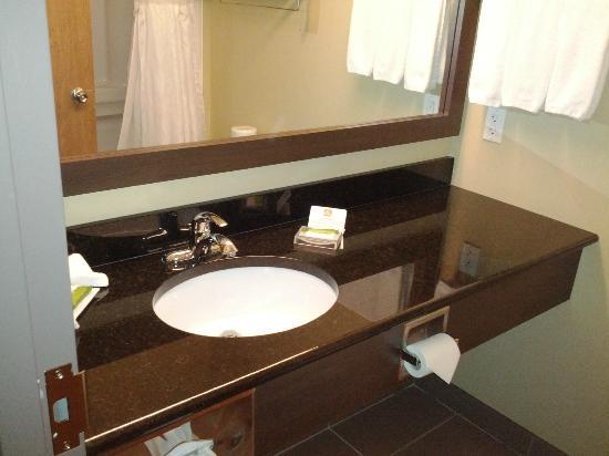 BEST WESTERN PLUS Dartmouth Hotel & Suites: granite counter top