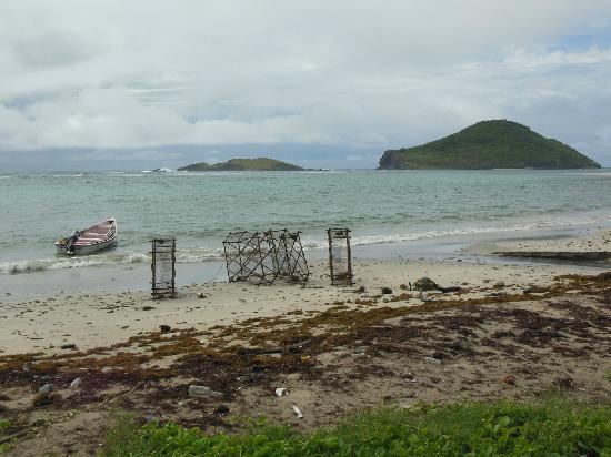 Lobster Pot Bay Beach Chalets : beach view