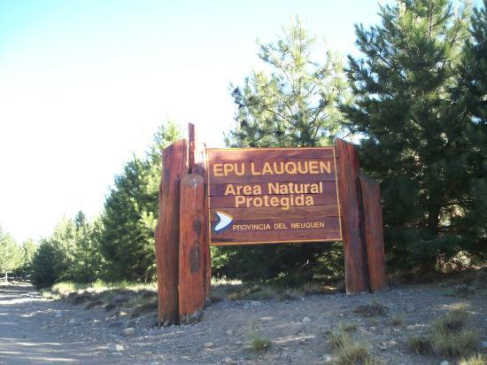 Neuquen, Argentina: Entrada al parque, con la belleza del bosque.