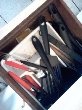 Gator Den at Angler's Resort: dirty utensil drawer