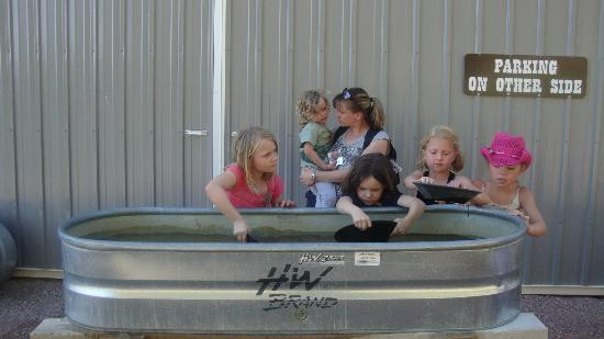 Circle B Ranch Chuckwagon Supper & Western Music Show: Panning for gold