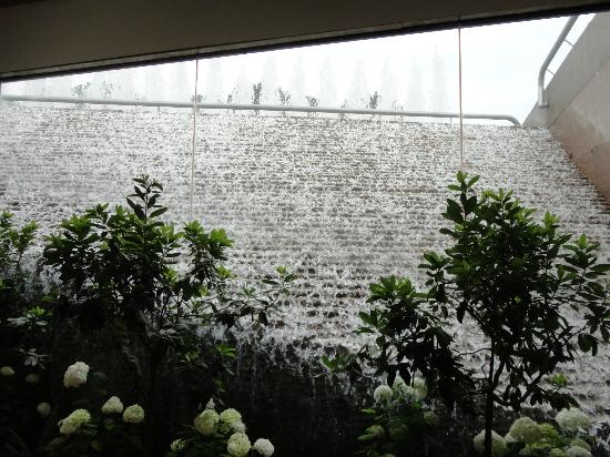 National Gallery of Art : Waterfall in Cafe
