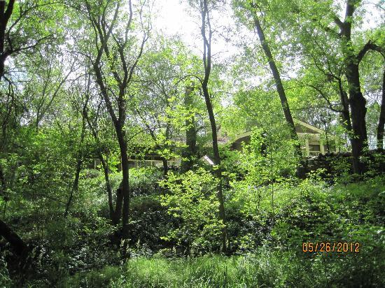 Creekside Inn at Sedona: Creekside Inn from Oak Creek 