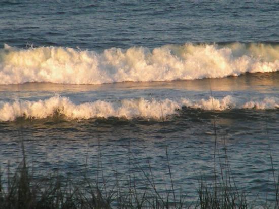 كواليتي إن كارولينا أوشن فرونت: Nice beach