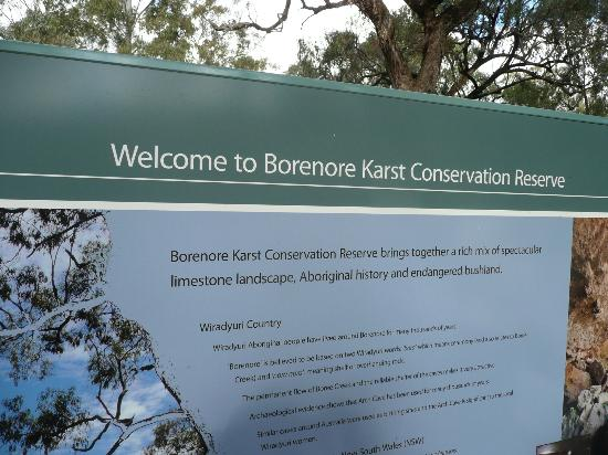 Borenore Karst Conservation Reserve: Welcome.