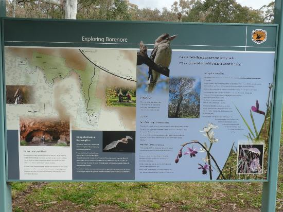 Borenore Karst Conservation Reserve: There is a great information board for you to be acquainted with the attraction.