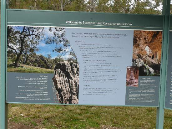 Borenore Karst Conservation Reserve: There is a lot of good information for you to read at the car park.