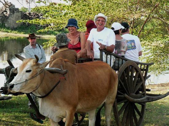 Banteay Chhmar: Ox-cart Tour