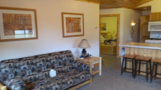 Alger Falls Motel: Living RM