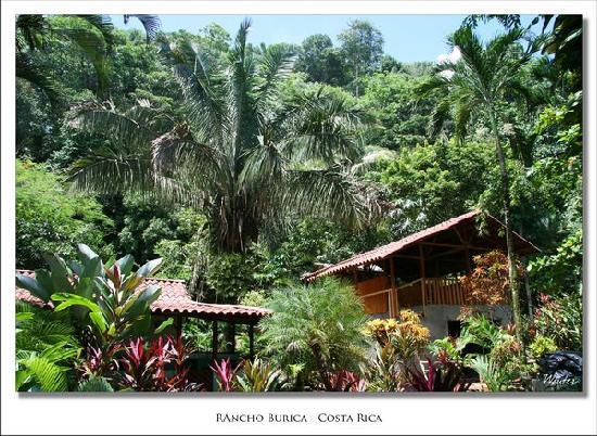 Rancho Burica: Garden and Boathouse cabina
