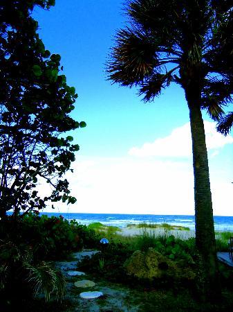 海灘廣場旅館照片