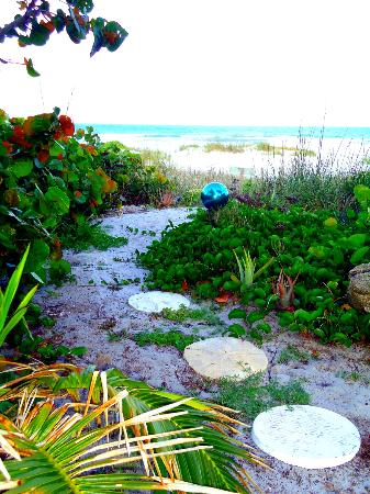Beach Place Guesthouses: Path to the beach