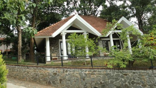 Hotel Treetop: cottage