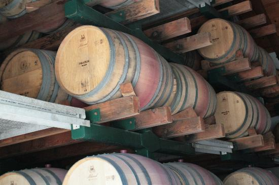 Paradigm Winery: The Oak Room (smell the wine)