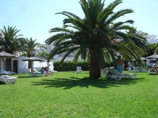 Hotel Gran Sol Ibiza: Garden