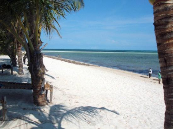 Clubviaggi Resort Twiga Beach & SPA: vista spiaggia 