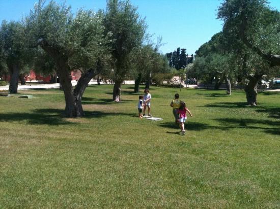 Dolmen Sport Resort: il parco...tra gli ulivi
