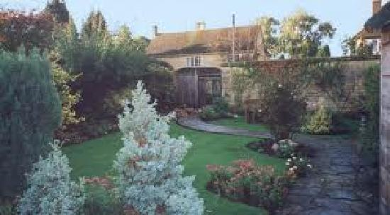 Olive Branch Guest House: Back garden