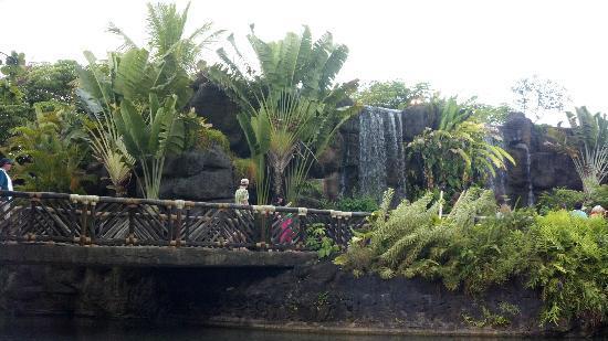 Alii Luau At The Polynesian Cultural Center: Tropical waterfalls