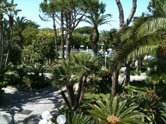 Park Hotel Terme Mediterraneo: Garden and thermal outsidepool