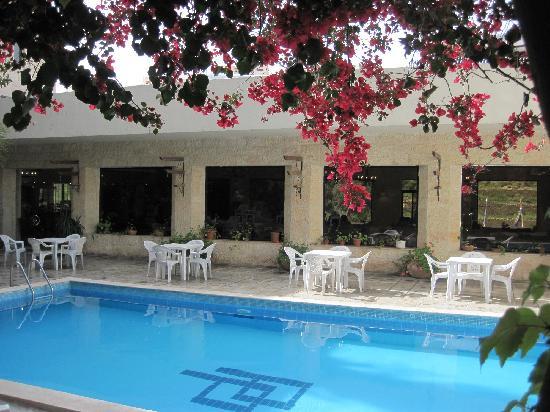 Photo of Petra Palace Hotel Wadi Musa