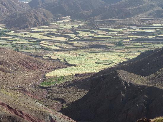 Morocco Dunes Day Tours: dag tour Atlas gebergte