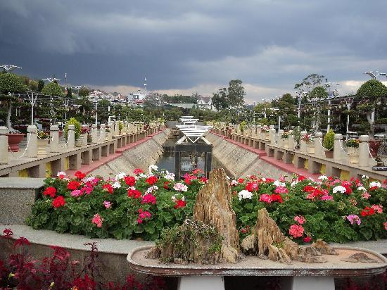 Da Lat, Wietnam: сад Цветов