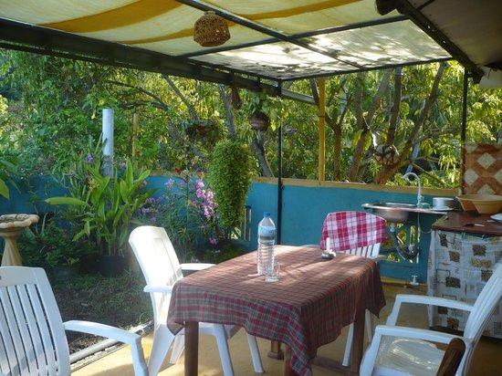 Birdhouse: roof top garden