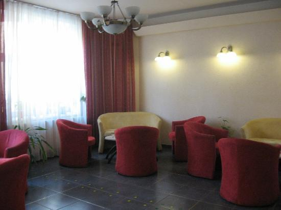 Hotel Ostruvek : lounge