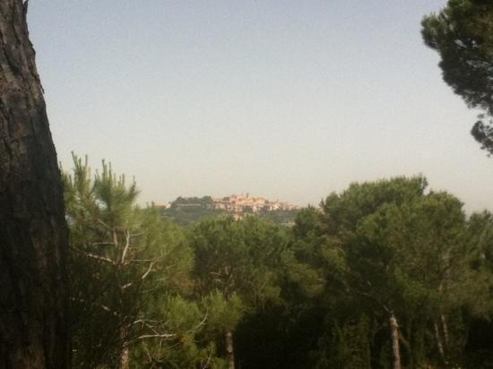 Hotel Panoramic: vistas de montepulciano