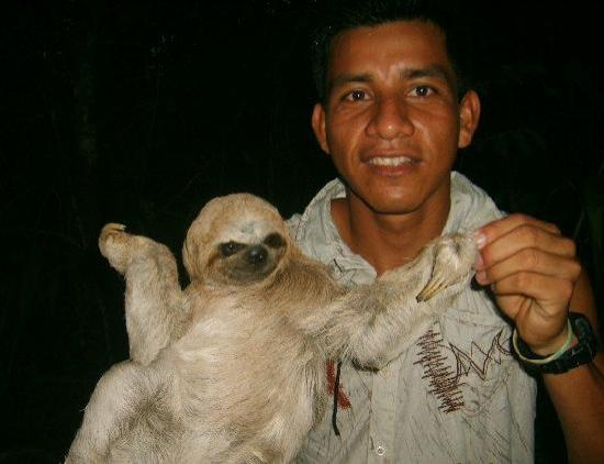La Fuente del Amazonas Lodge : peresoso