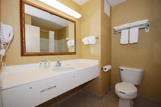 Country Inn & Suites By Carlson Fairborn South: Lavatory
